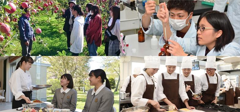 食のプロを目指せる函館の学校