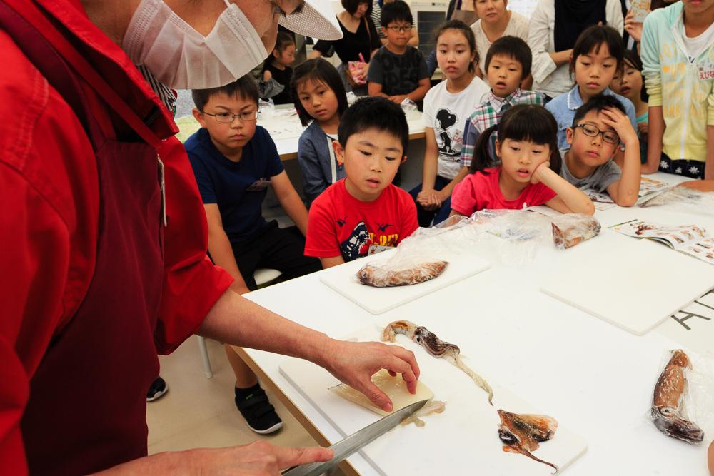 イカに親しみ、おいしく食べる子ども勉強会「イカコン」レポート